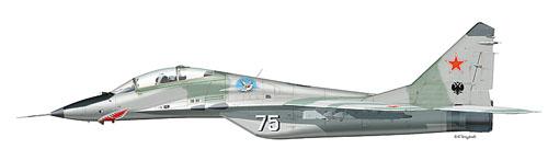 МИГ-29УБ Борт №75