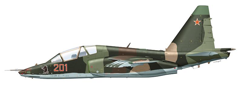 """Су-25УБ """"борт 201"""""""