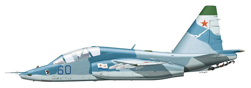 "Су-25УТГ ""борт 60"" авиации ЧФ."