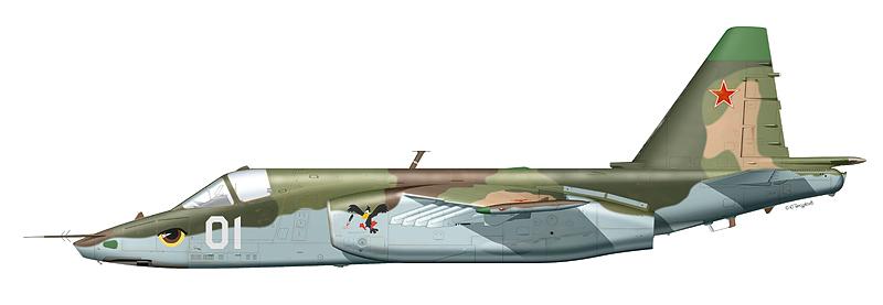 Су-25 « борт 01 »