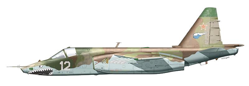 """Су-25 """"борт 12"""""""