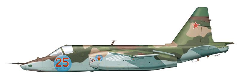 """Су-25 """"борт 25"""""""