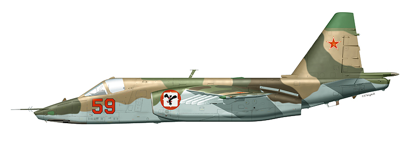 """Су-25 """"борт 59"""""""