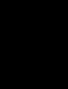 Схематический чертёж Ли-2 разрешение 2000 х 2600 px Автор:Kaboldy
